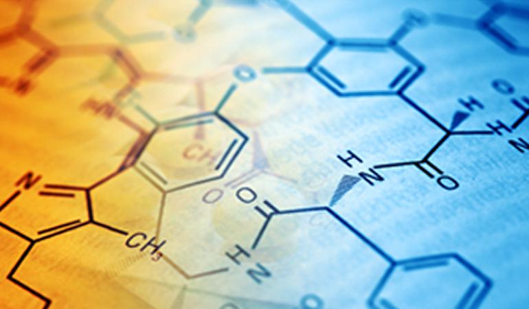 ¿Cómo actúa el ácido alfa lipoico?
