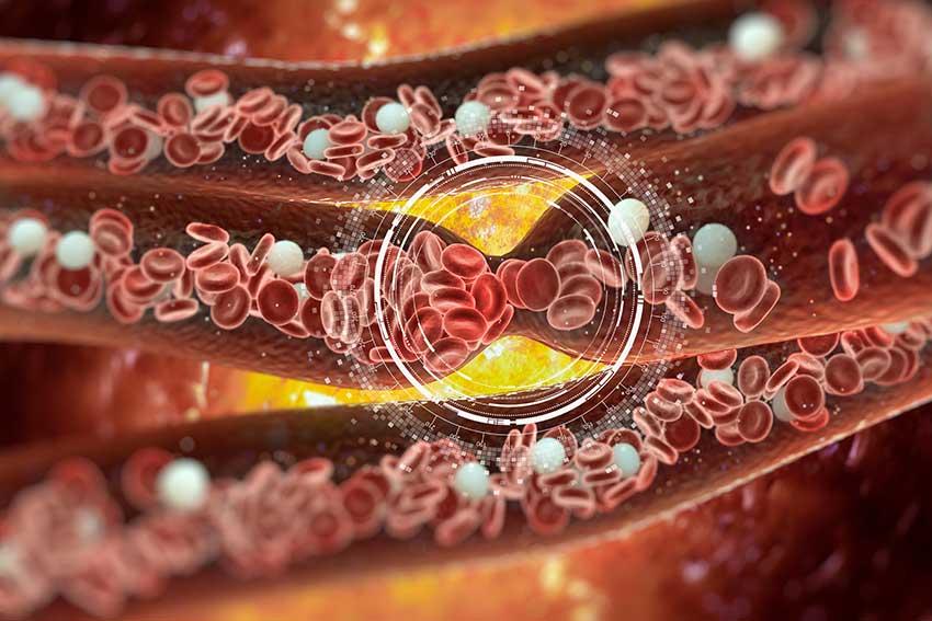 Día Mundial del Corazón: ¿puede la vitamina C liposomal proporcionarte un latido cardíaco saludable?